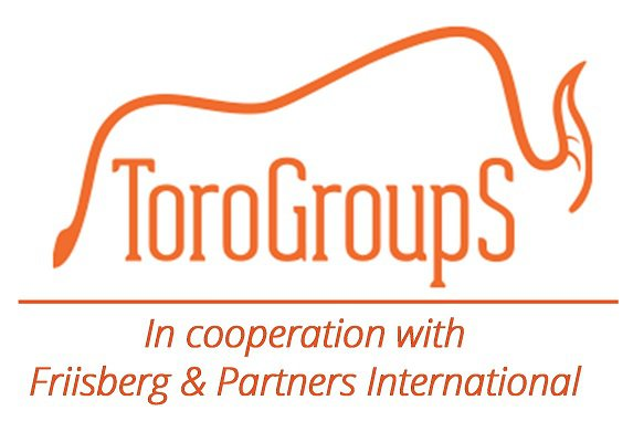 Toro Group S  logo