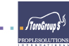 TORO GROUP S HR Consulting Company logo