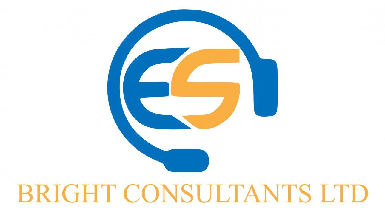 ES Bright Consultants LTD logo