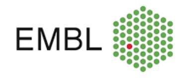 European Molecular Biology Laboratory (EMBL) logo