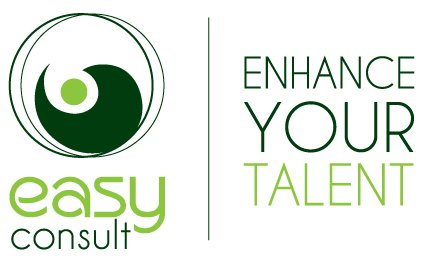 Easy Consult Ltd. logo